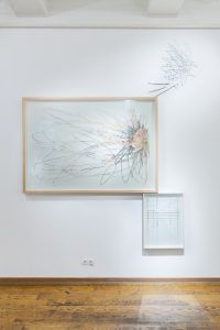 <i>Maggie Cardelus</i>, 2012