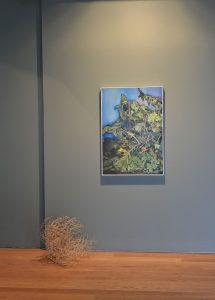 pierpaolo campanini, installation view, lismore, 2016