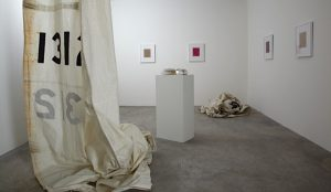 front room, installation view, contemporary art museum st. louis, st. louis, 2011