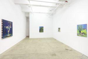 <i>pierpaolo campanini</i>, 2013 </br> installation view, kaufmann repetto, new york