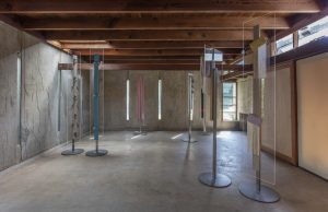 <I>the conscientious objector</I>, 2018