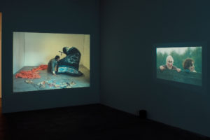 <i>animal farm</i>, 2017</br>installation view, kaufmann repetto, new york