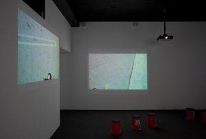octopus, installation view, hammer museum, los angeles, 2011