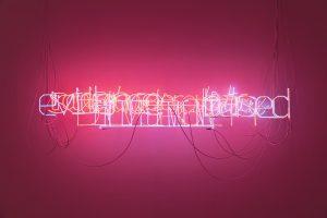 <i>forbidden woods illuminated</i>, 2018</br>neon lights, nylon, metacrylate