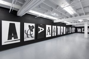 <I>a public character</I>, 2015