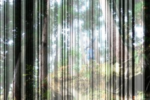 <I>echigo forest with zoo</I>, 2008 </br> four layers of cut out photographs, 100 x 150 cm / 39.4 x 59 in