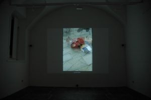 zoo, age 10, 2007, video projection