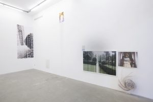 <I>doing life</I>, 2012 </br> installation view, kaufmann repetto, milan