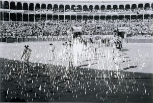 <I>lala's bullfight</I>, 2006 </br> cut out photographs, 70 x 100 cm / 27.5 x 39.4 in