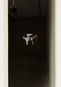 interregnum, installation view, kaufmann repetto, milano, 2017