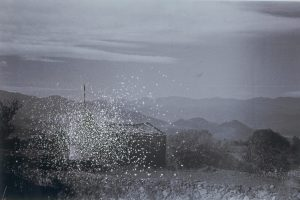 <i>galicia</i>, 2005 </br> cut out photographs, 47 x 61 cm / 18.5 x 24 in