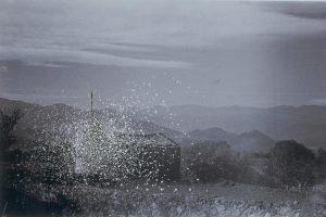 galicia, 2005, cut photograph, 47 x 61 cm / 18.5 x 24 in