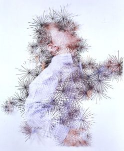 <i>fuzzy zoo</I>, 2005 </br> cut out photographs, 120 x 120 cm / 47.2 x 47.2 in