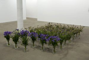 untitled (congratulations), 2007