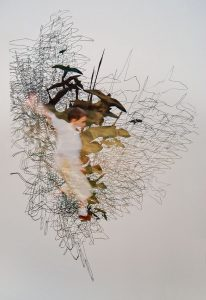 <I>zoo flying</I>, 2004 </br> cut out photographs, 180 x 160 cm / 70.9 x 63 in