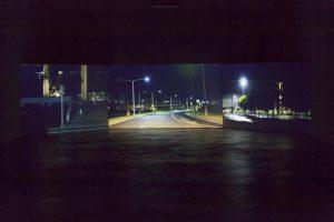 salò island, installation view, uc irvine contemporary arts center, irvine, 2014