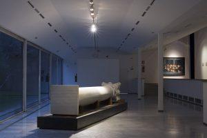 <i>vite in transito</i>, 2013 </br>  installation view, pac - padiglione d'arte contemporanea, milan