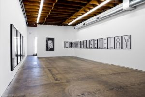<i>Shannon Ebner</i>, 2011