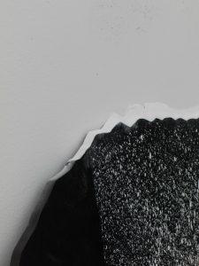 <i>immagine seme (seed-image)</i>, 2010 </br> (detail)