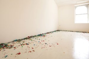 <i>expo 1: new york</i>, 2013
