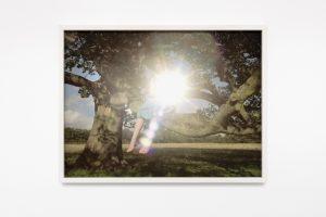per speculum, 2019, framed photograph, 63 x 83 x 5,5 cm / 24.8 x 32.7 x 2.2 in