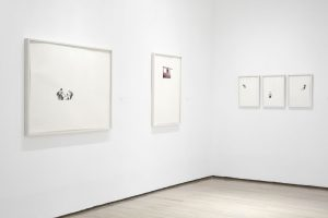 <i>drawn from photography</i>, 2011