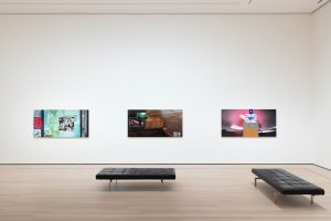 <i>Surrounds: 11 Installations</i>, 2019