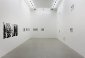 <i>a graphic tone</i>, 2019