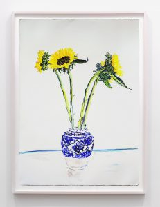 sunflowers, 2016