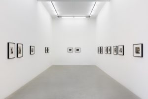 <I>cross</I>, 2019