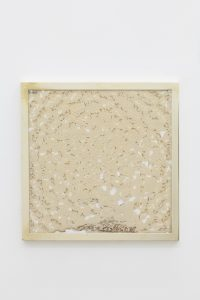 <i>a mother's mother's mother</i>, 2012</br> sourdough, engraved polyeurithane, brass</br> 50.5 x 50.5 cm