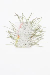 maggie cardelús, by way of pressed white salvia, 2012 pressed flowers, spray paint, glass, 25 x 17 cm