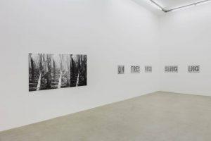 <i>a graphic tone</i>, 2019</br>installation view, kaufmann repetto, milano