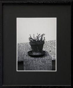 thomas zipp, a. b.: degenerate, 2013 marker on photograph, 62.5 x 52.5 cm framed