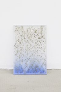 maggie cardelús, by way of pressed broom grass, 2012 pressed flowers, spray paint, glass, 25 x 17 cm