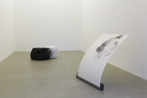 <i>cinque posizioni per un mondo nuovo</i>, 2013</br>installation view, kaufmann repetto, milan