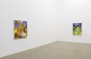 pierpaolo campanini, installation view, kaufmann repetto, milan, 2016