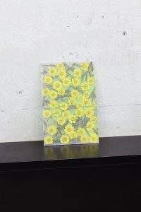 maggie cardelús, by way of pressed yellow daisies, 2012 pressed flowers, spray paint, glass, 25 x 17 cm
