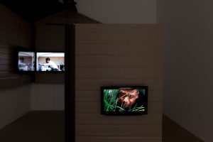<i>piovra</i>, 2011</br> installation view, kaufmann repetto, milan