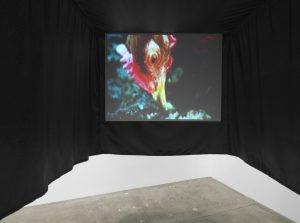 <i>some end of things: the conception of youth</i>, 2011</br> 8mm trasferred to dvd / flying cinema, 3' / site specific