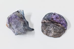 <i>untitled</I>, 2020 </br> plaster, paint </br> left: 5,1 x 12,7 x 7,6 cm / 2 x 5 x 3 in </br> right: 14 x 12,7 x 6,4 cm / 5.5 x 5 x 2.5 in