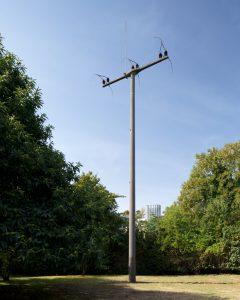 <i>KölnSkulptur # 7</I>, 2013 </br> installation view, Skulpturenpark Köln, Cologne