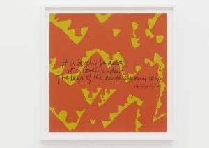 <I>the legs of the earth are my legs - shell writing #5</I>, 1976 </br> screenprint</br> 63,5 x 63,5 x 4 cm / 25 x 25 x 1.5 in (framed)