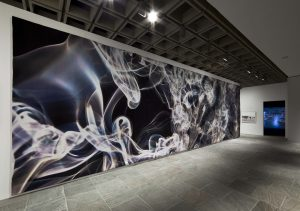 <I>whitney biennial</i>, 2010 </br> installation view, whitney museum of American art